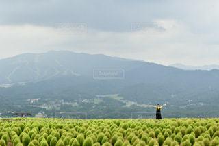 背景に大きな山の写真・画像素材[2376204]