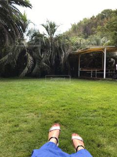 野原でボールで遊んでいる少年の写真・画像素材[2374251]