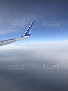 大空に羽ばたくの写真・画像素材[2373183]