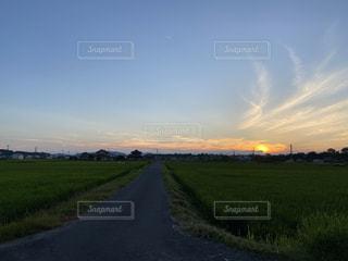 夕焼けの写真・画像素材[3507907]