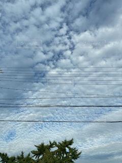 空の雲の群れの写真・画像素材[4770112]