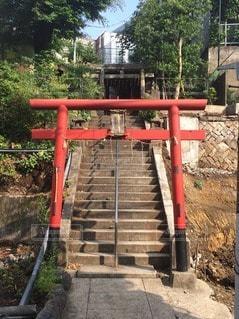 神社の写真・画像素材[29249]