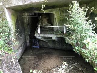 自転車と田舎のトンネル4の写真・画像素材[2354399]