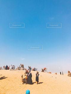 砂漠のラクダの写真・画像素材[2351954]