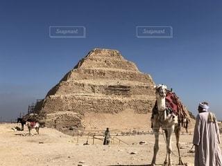 ラクダとピラミッドの写真・画像素材[2356156]