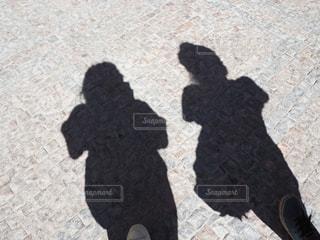 散歩中の写真・画像素材[2374676]