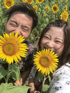 黄色い花を見た人の写真・画像素材[2355008]