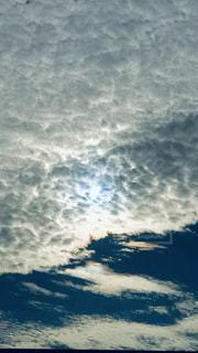 暑いけど秋の空の写真・画像素材[2434132]