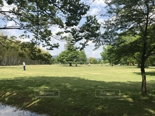 公園⛲️の写真・画像素材[2355787]