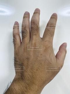 男性の指毛の写真・画像素材[2497886]