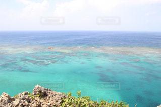 イグアナ岩の写真・画像素材[2359617]