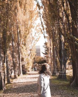 木の隣に立っている人の写真・画像素材[2714958]