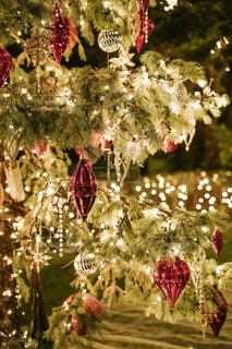 クリスマスツリーの写真・画像素材[2757149]