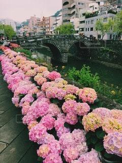 長崎眼鏡橋の写真・画像素材[91671]
