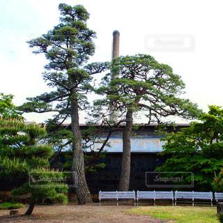 富岡製糸場の写真・画像素材[2363245]