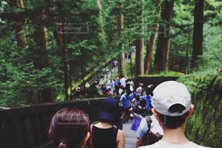 お参りする人々と森の道の写真・画像素材[2365282]