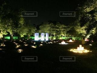 岡山城の写真・画像素材[91696]