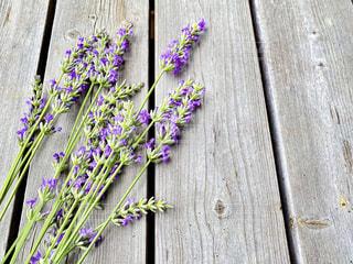 木製のデッキの上のラベンダーの花の写真・画像素材[3348143]