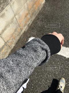 テントウムシの写真・画像素材[2367756]