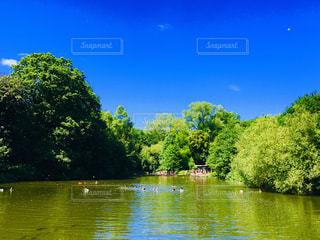 水の池の写真・画像素材[2386059]