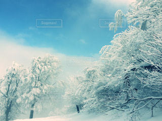自然が作った景色の写真・画像素材[2374532]