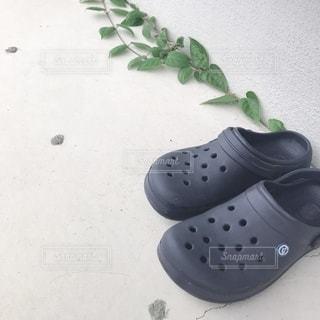 靴とつる草の写真・画像素材[2510195]