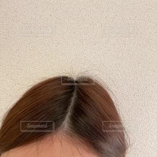 頭のピックアップの写真・画像素材[2614404]
