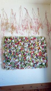 花のクローズアップの写真・画像素材[2999669]