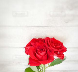 花瓶に花束を入れるの写真・画像素材[3549736]