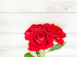 花束の写真・画像素材[3549866]