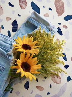 花のクローズアップの写真・画像素材[4512105]