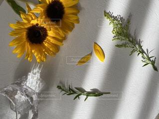 テーブルの上に花の花瓶の写真・画像素材[4617971]