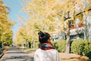 秋の写真・画像素材[2903283]