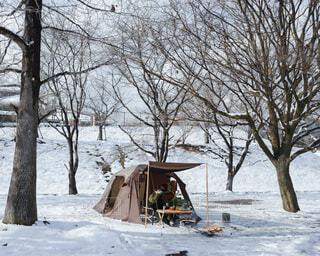 雪中キャンプの写真・画像素材[4076943]