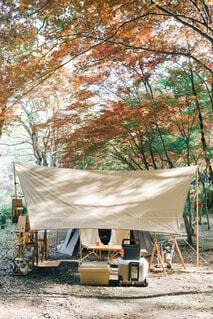 キャンプの写真・画像素材[4447917]