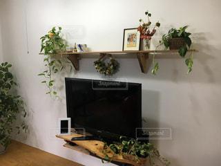 緑の植物のあるリビングルームの写真・画像素材[2376652]