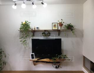 植物の家具と花瓶で満たされたリビングルームの写真・画像素材[2376656]