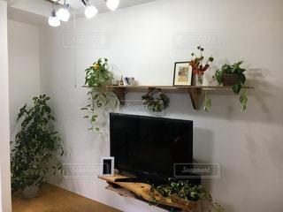 植物の家具と花瓶で満たされたリビングルームの写真・画像素材[2376658]