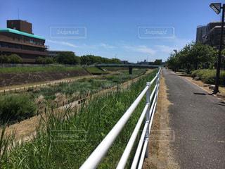 河川沿いにある道の写真・画像素材[2377068]
