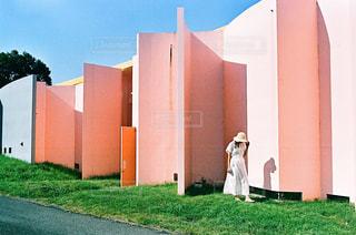 淡いピンクの写真・画像素材[2485755]