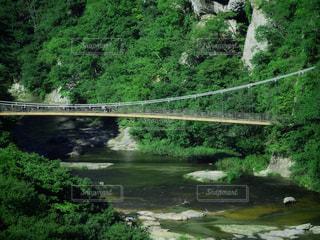吊り橋のある渓谷の風景の写真・画像素材[2386721]