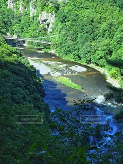 吊り橋がある渓谷の写真・画像素材[2388208]