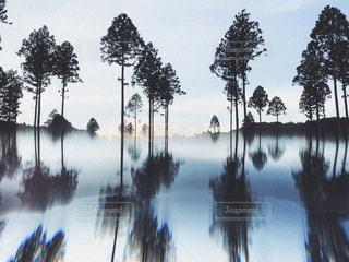 自然のリフレクションの写真・画像素材[2390700]