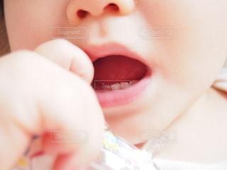 赤ちゃんの歯の写真・画像素材[2382974]