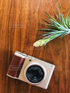 カメラとエアープランツの写真・画像素材[2388558]