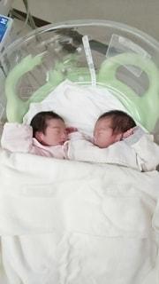 かわいいふたごの赤ちゃん。の写真・画像素材[3062273]