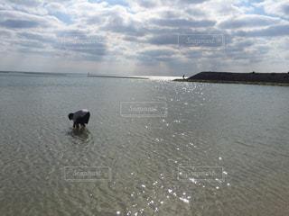 自然の写真・画像素材[532872]