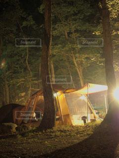 森林サイト テント シェルターの写真・画像素材[2389096]