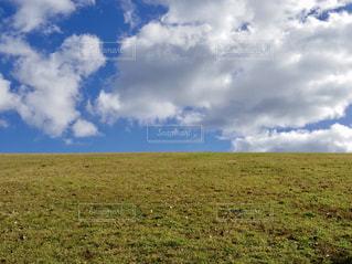丘の写真・画像素材[2392163]