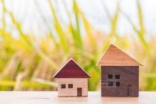 稲とミニチュアの家の写真・画像素材[2720873]